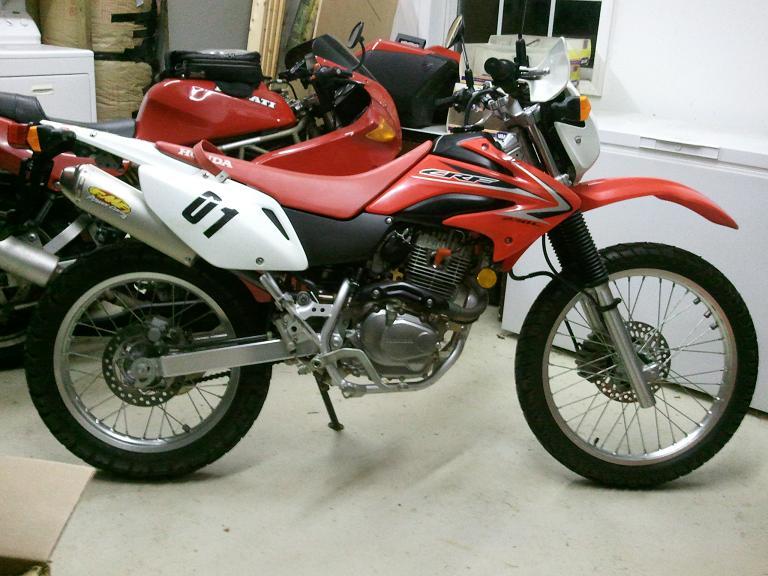 Ducati Monster  Beginner Bike