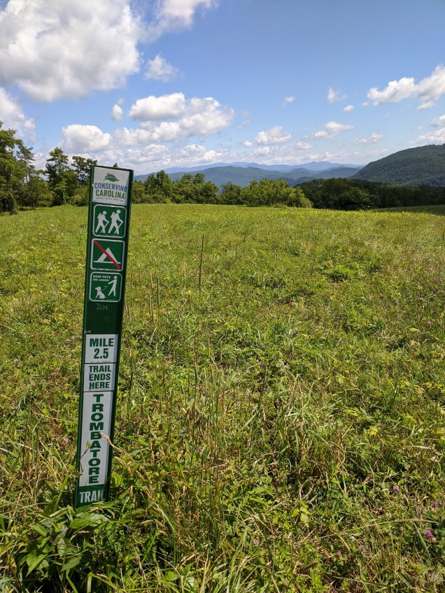 2.5 miles through the woods to this blue ridge pasture. The map at the trail head claims there are plans to continue this trail and connect it with others to make a larger loop.